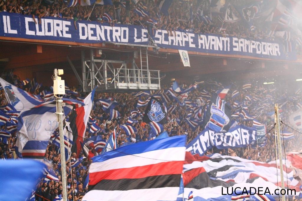 sampdoria-varese_060612_11