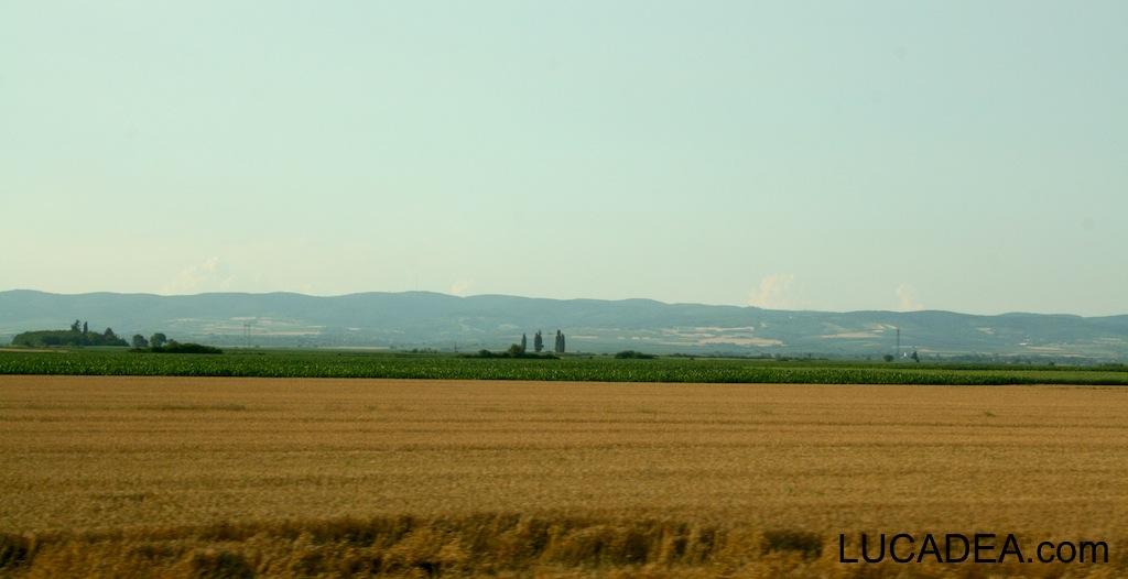 paesaggio serbo