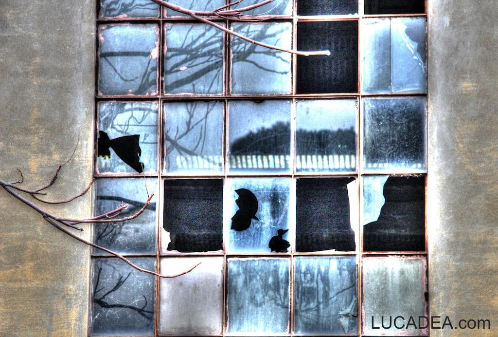 Finestra rotta foto hdr - La finestra rotta ...