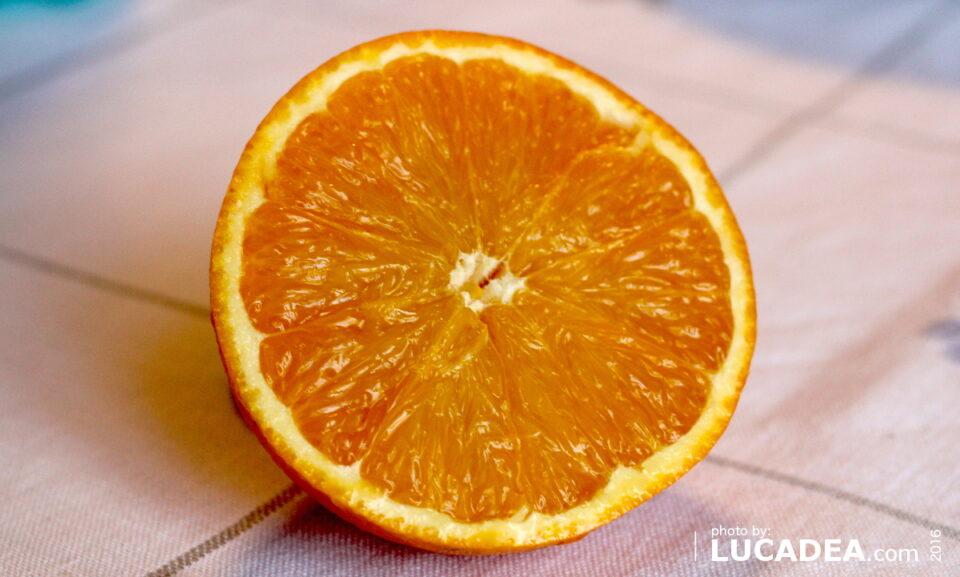 arancia tarocco