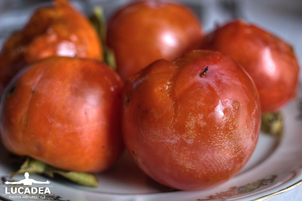 Cachi uno dei frutti pi antichi coltivati dall 39 uomo foto - Foto di uno shamrock ...
