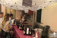 cardini-critical-wine-11