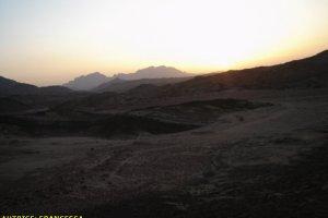 deserto_sinai13