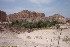 deserto_sinai34
