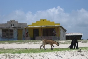 Cuba_086