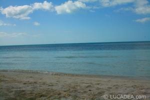 isla_contoy_04