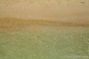 isla_contoy_06