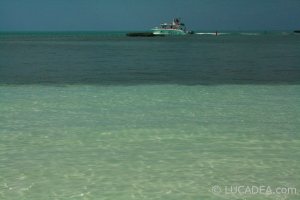 isla_contoy_07