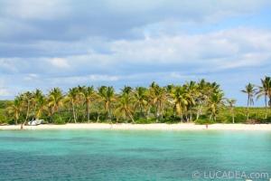 isla_contoy_10