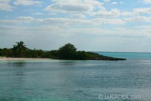 isla_contoy_13