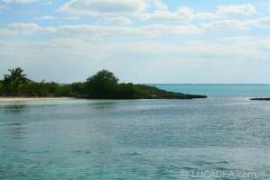 isla_contoy_14