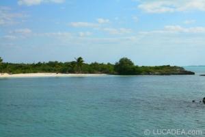 isla_contoy_15
