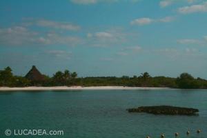 isla_contoy_16