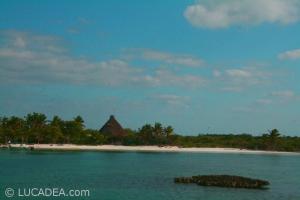 isla_contoy_17