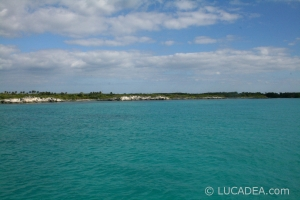 isla_contoy_19