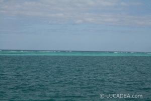 isla_contoy_20