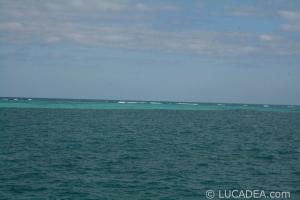 isla_contoy_21