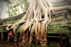cambogia-07