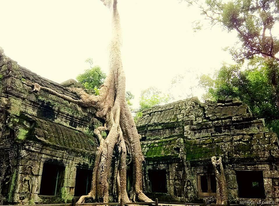 cambogia-05