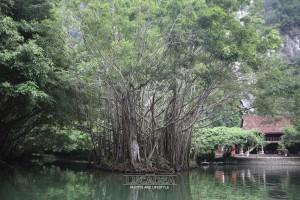 Danh_Trang_Trang_An-46