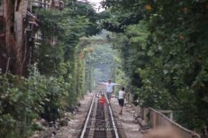 Hanoi_85
