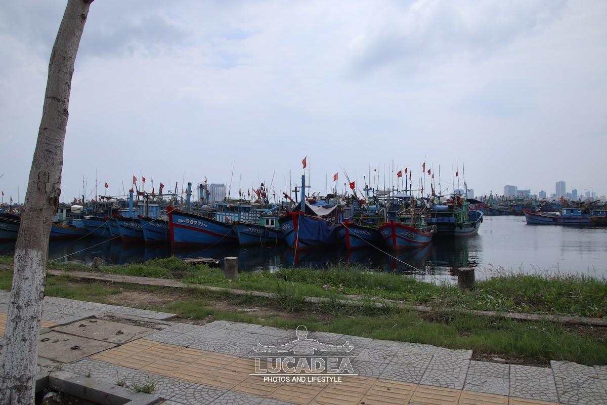 Tho-Quang-01