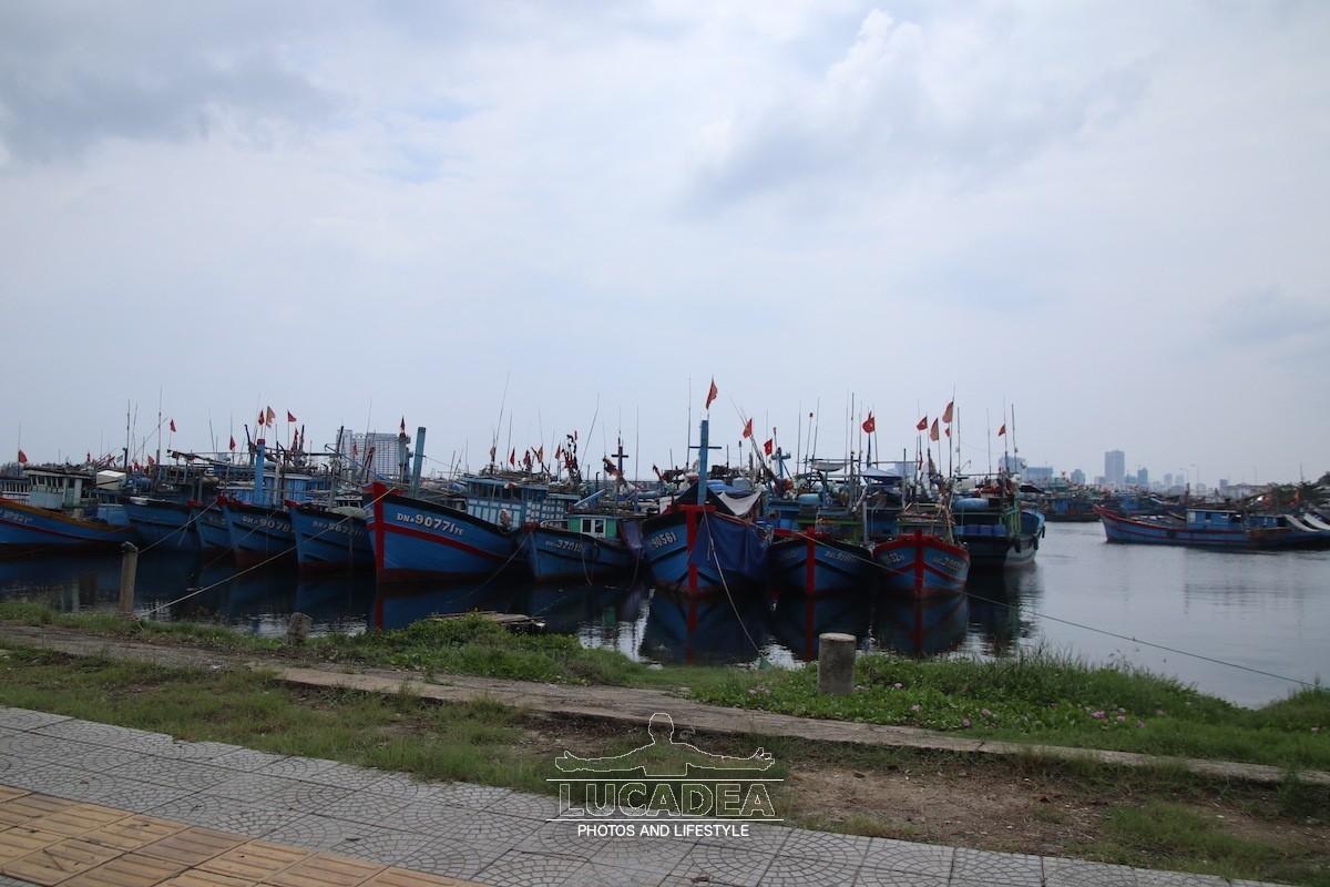 Tho-Quang-03