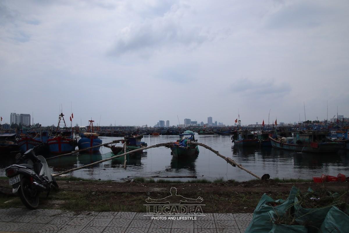 Tho-Quang-04