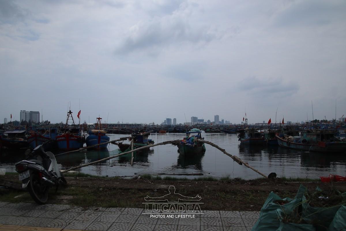 Tho-Quang-05
