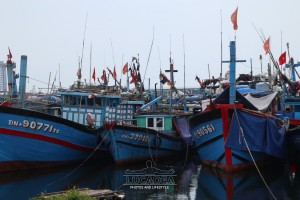 Tho-Quang-02