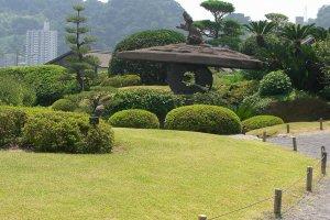 kagoshima23