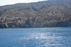 cipro_04