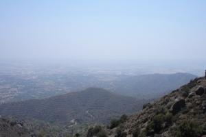 cipro_09