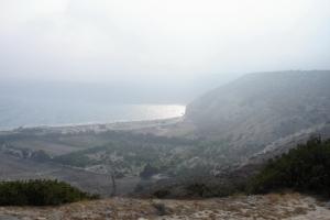 cipro_15