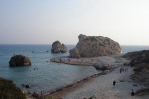 cipro_17