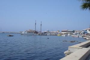 cipro_18