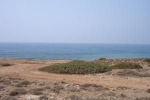 cipro_25