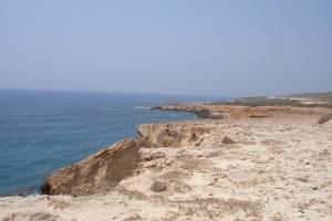 cipro_26