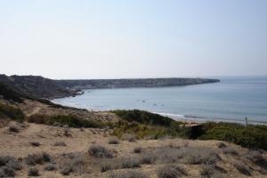 cipro_32