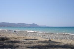 cipro_33