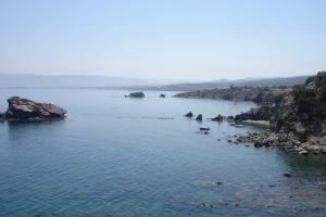 cipro_35