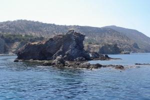 cipro_36