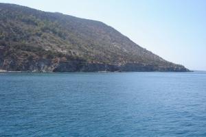 cipro_37