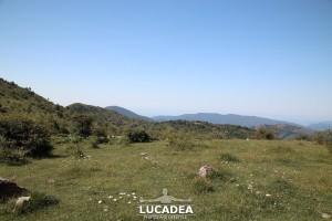 Sentiero-Case_Soprane-Biscia-Reppia-09