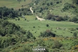 Sentiero-Case_Soprane-Biscia-Reppia-15