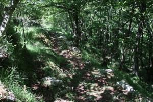 Sentiero-Case_Soprane-Biscia-Reppia-38
