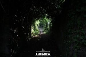 Sentiero-Libiola-Case-Gromolo-08
