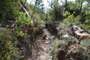Sentiero-Libiola-Case-Gromolo-11