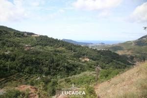 Sentiero-Libiola-Case-Gromolo-19
