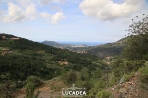 Sentiero-Libiola-Case-Gromolo-21
